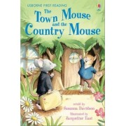 The Town Mouse and the Country Mouse: Level 4 by Susanna Davidson