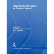 Information Structure in Spoken Arabic by Jonathan Owens