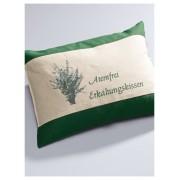 Himmelgrün Atemfrei-Kissen, ca. 30x20cm Himmelgrün grün