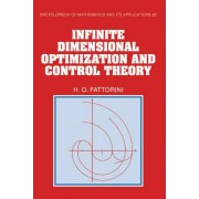 Infinite Dimensional Optimization and Control Theory by Hector O. Fattorini