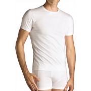Punto Blanco Basix Short Sleeved T Shirt 5313020