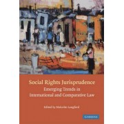 Social Rights Jurisprudence by Malcolm Langford