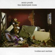 Sonic Youth - The Destroyed Room (0602517157118) (1 CD)
