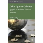 Celtic Tiger in Collapse 2010 by Peadar Kirby
