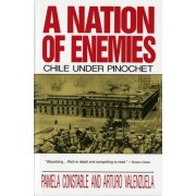 A Nation of Enemies by Pamela Constable