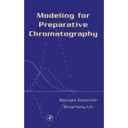 Modeling for Preparative Chromatography by Georges Guiochon