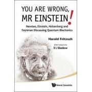 You Are Wrong, Mr Einstein!: Newton, Einstein, Heisenberg And Feynman Discussing Quantum Mechanics by Jeanne Rostant