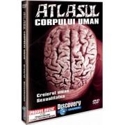 Discovery - Atlasul corpului uman:Creierul uman.Sexualitatea (DVD)