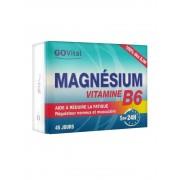 Govital - magnésium B6 - 1cp/24h - 45cp