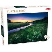 Summer Night Puzzle 1000 Pcs - Puzzle (Tactic Games 40902) [versión inglesa]