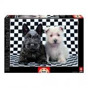 Educa Terrier kutyusok puzzle, 500 darabos