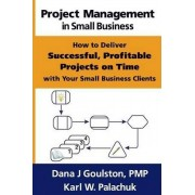 Project Management in Small Business - How to Deliver Successful, Profitable Projects on Time with Your Small Business Clients by Dana J Goulston
