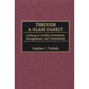 Through a Glass Darkly by Stephen J. Cimbala
