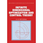 Infinite Dimensional Optimization and Control Theory by H. O. Fattorini