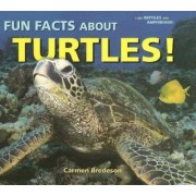 Fun Facts about Turtles! by Carmen Bredeson