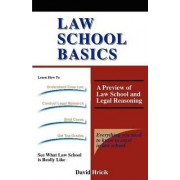Law School Basics by Professor David Hricik
