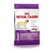 Royal Canin giant junior active saco de 15 kg