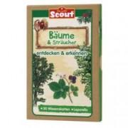 Scout Lernkarten Bäume Verschiedene I