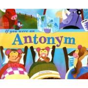 If You Were an Antonym by Nancy Loewen