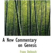 A New Commentary on Genesis, Volume 1 by Franz Julius Delitzsch