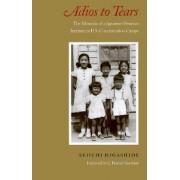 Adios to Tears by Seiichi Higashide