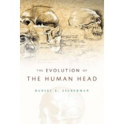 The Evolution of the Human Head by Daniel E. Lieberman