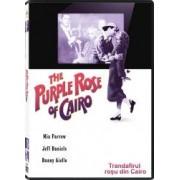PURPLE ROSE OF CAIRO DVD 1985