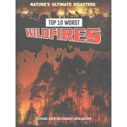 Top 10 Worst Wildfires by Louise Spilsbury