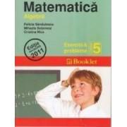 Matematica cls 5 exercitii si probleme algebra - Felicia Sandulescu