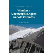 Wind as a Geomorphic Agent in Cold Climates by Matti Seppala