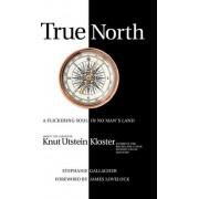 True North by Stephanie Gallagher