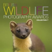 British Wildlife Photography Awards: Collection 7 by MARK FOR CAWARDINE