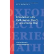 Introduction to the Mathematical Theory of Compressible Flow by Antonin Novotny