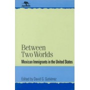 Between Two Worlds by David G. Gutierrez