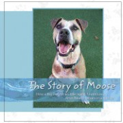 The Story of Moose: How a Big Dog on a Little Island Found Love After Nearly 5 Years in a Shelter