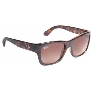Ray-Ban RB4194-I 710/13 Wayfarer Sunglasses(Brown)
