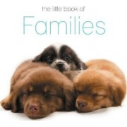 The Little Book of Families by The Next Big Think