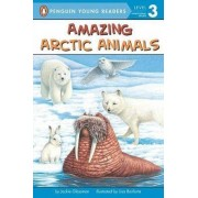Amazing Arctic Animals by Jackie Glassman