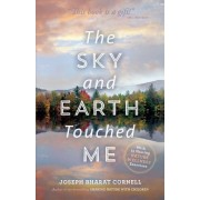 Sky and Earth Touched Me by Joseph Cornell