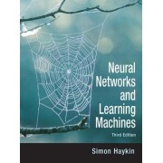 Neural Networks and Learning Machines by S.S. Haykin