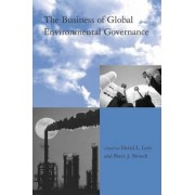 The Business of Global Environmental Governance by D.L. Levy