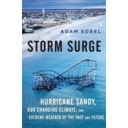 Storm Surge: Hurricane Sandy, Our Changing Climate, and Extreme Weather of the Past and Future by Adam Sobel