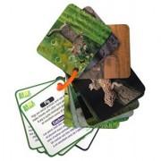 Animal Planet 3D Flash cards - Pets & Farm Animals