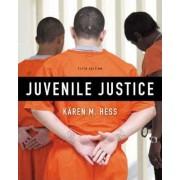Juvenile Justice by Karen M Hess
