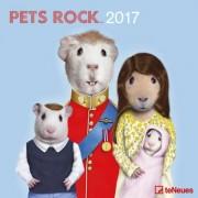 Calendrier 2017 - Pets Rock - 30x30 Cm