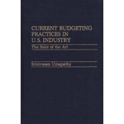 Current Budgeting Practices in U.S. Industry by Srinivasan Umapathy