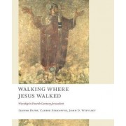 Walking Where Jesus Walked by Lester Ruth