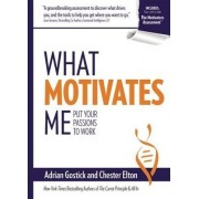 What Motivates Me by Adrian Gostick