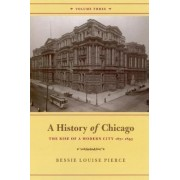 A History of Chicago: Rise of a Modern City, 1871-1893 v. 3 by Bessie Louise Pierce