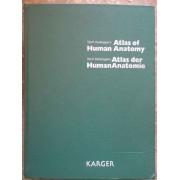 Wolf-heidegger's Atlas Of Human Anatomy/ Atlas Der Human Anatomie - Hans Frick Benno Kummer Reinhard Putz